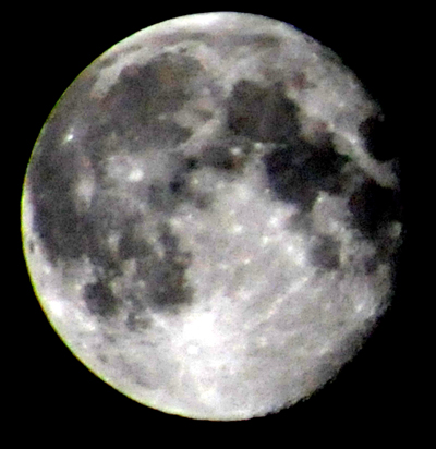 moon d300  FCL300