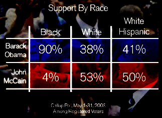 Obama VS. MakKein by Race - May08