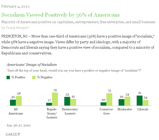 Socialism in USA Gallup 020210