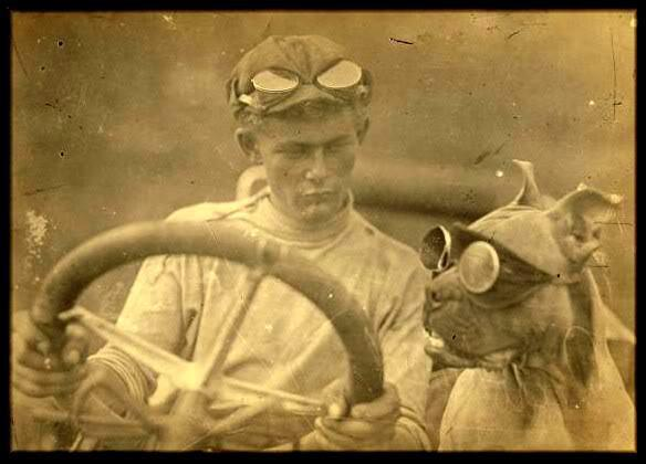 1903_Horatio_Nelson_Jackson_and_Sewall_K_Crocker_first_drive_automobile_acrossUS_in_Idaho_they_obtained_dog_Pit_Bull