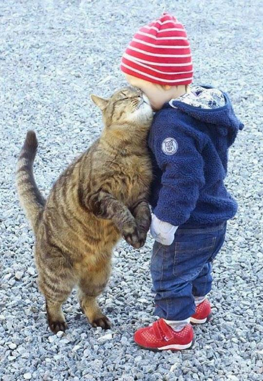 cat_and_kid_whisper