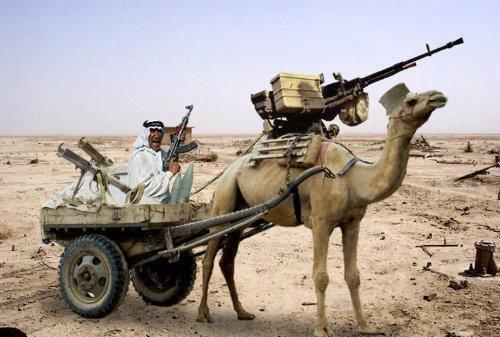 Camel Tachanka