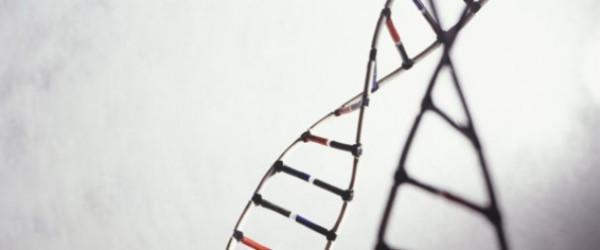 r-GENETICS-large570