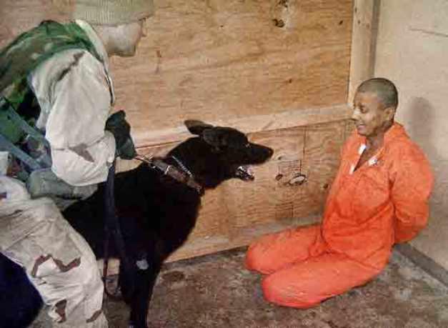 dog-torture-terrorism-abu-ghraib1b