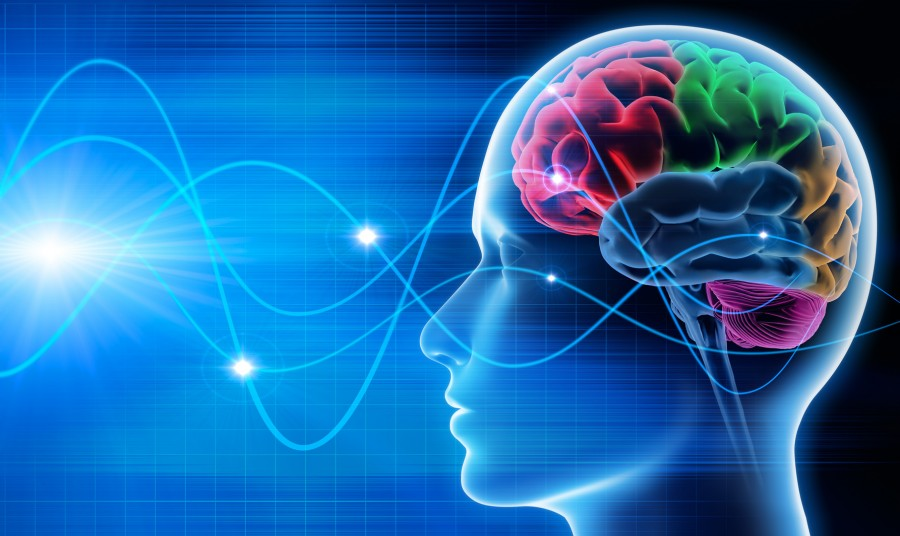 психология внимания в картинках инстаграм можно