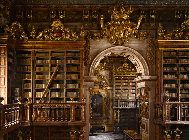 библиотека университета Португалия