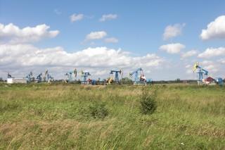 Гусев-Гумбиннем и прочие места Калининградской области.