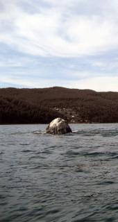 Байкал Шаман-камень Shaman Stone Baikal