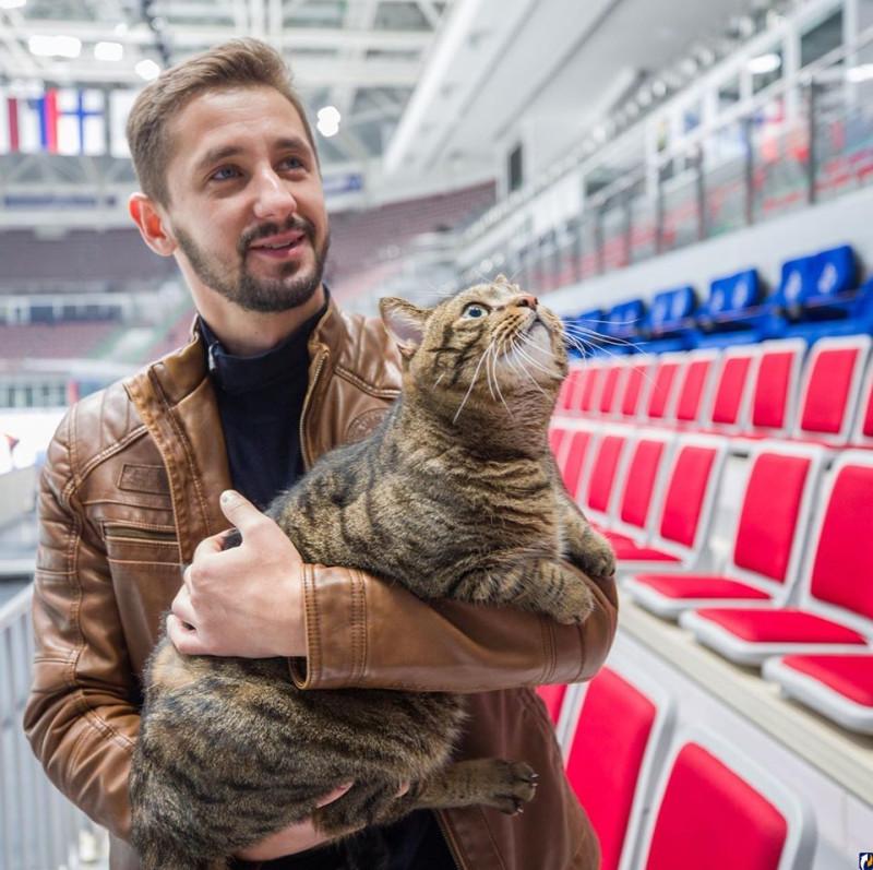 """Тот самый """"слишком толстый кот"""". Фото: HC Admiral Vladivostok в социальной сети Facebook."""