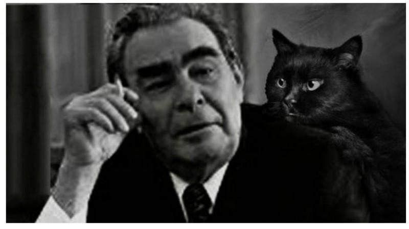 Брежнев с котом Ламой