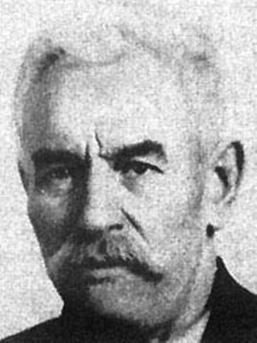 Глава комиссии Матвей Муранов.