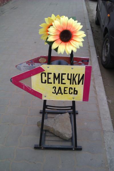 IMAG4374