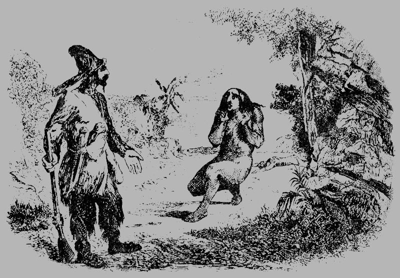 18935-i_037