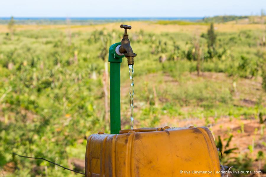 Водопровод на плантации