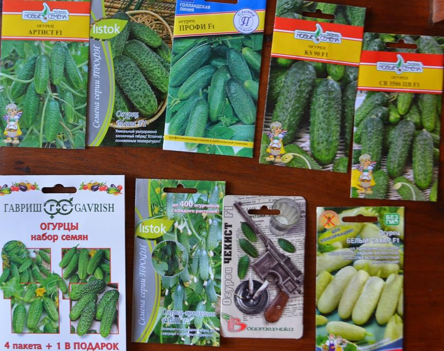 Огород в тропиках. Новый этап развития