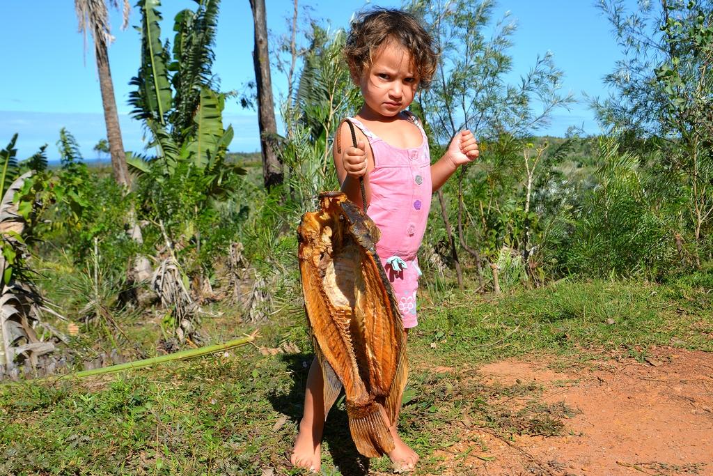 Копчение аквариумных рыб