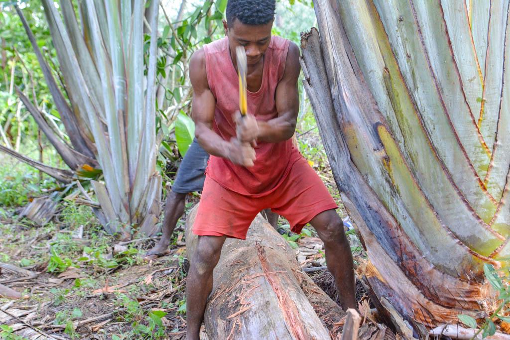 Аборигены делают пиломатериал