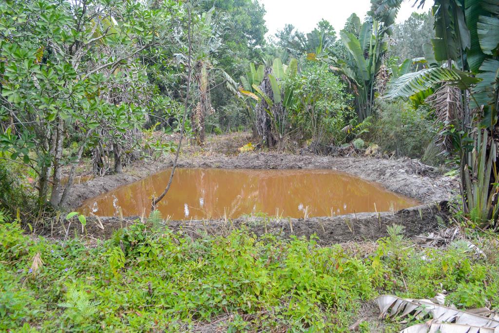 Водохранилище площадью 500 кв метров. Вручную, за пять дней