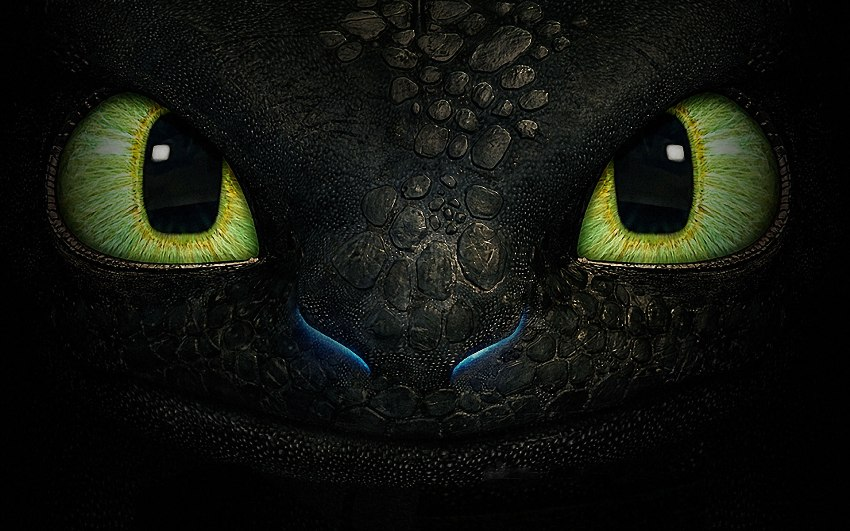 How-to-Train-Your-Dragon-Toothless-Face-HD-Wallpapers