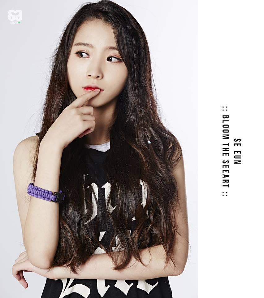 debut15