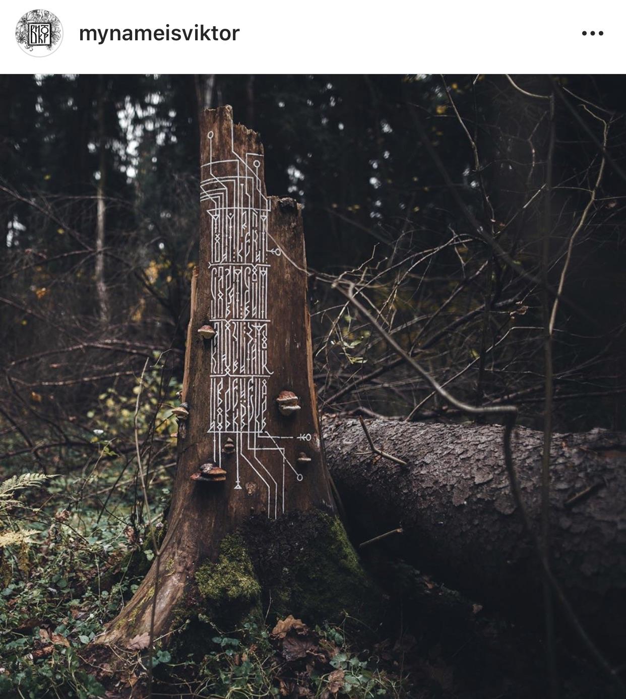 @mynameisviktor - Виктор Пушкарев. Исследует славянскую и скандинавскую каллиграфию. Завораживает его проект - буквы на стволах деревьев.