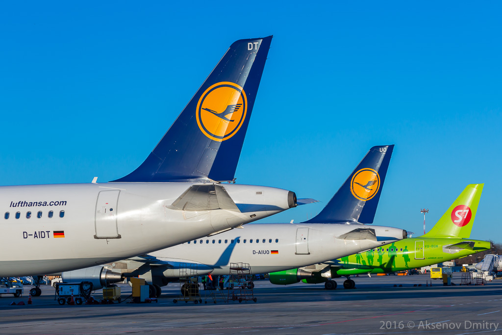 airline and lufthansa