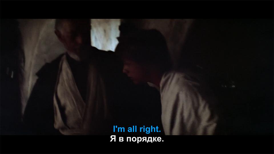 Бедный Люк... Он так тяжело переживал гибель дяди с тётей, так убивался. Хотел напиться и забыться...