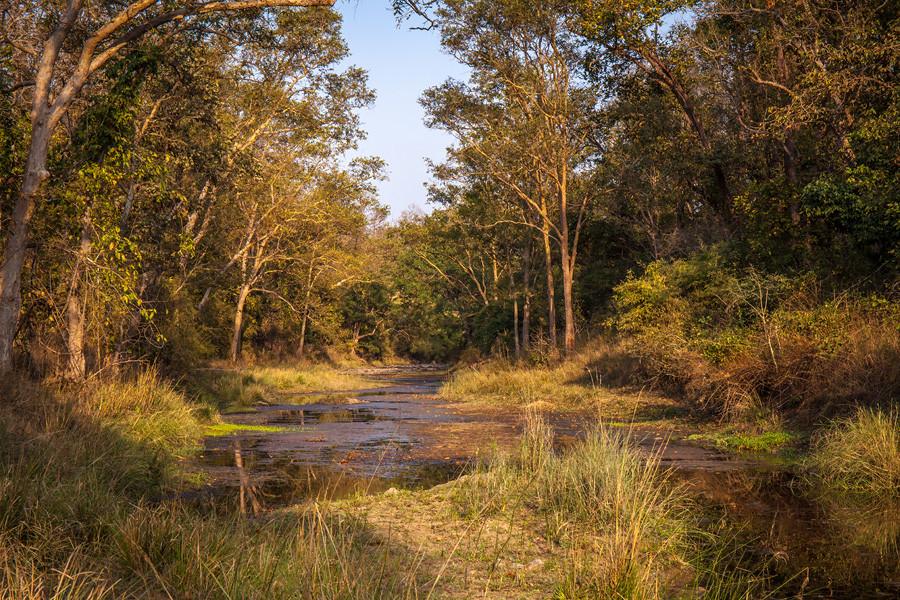 Речные пейзажи, парк Канха