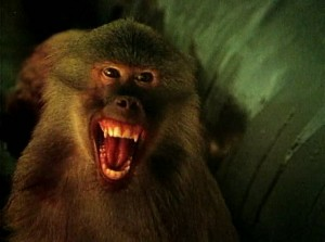 В тени Килиманджаро 1986.avi_snapshot_00.29.48_[2017.03.26_15.00.17]