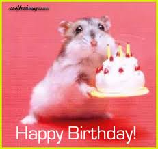 birthday mouse 2