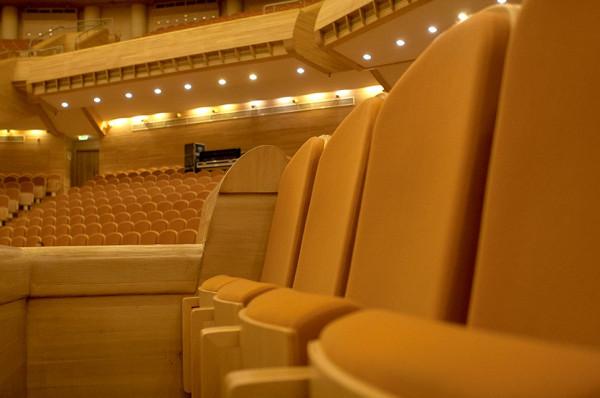В пустом Светлановском зале ММДМ