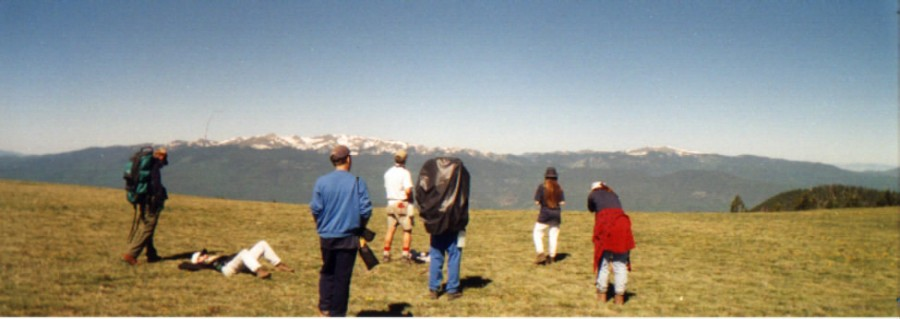 Alpine Meadow, Baldy Mountain