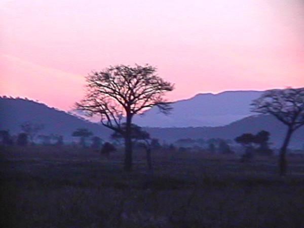 Twilight at Mikumi NP, Tanzania 2001