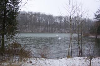 Snowfall over Lake Weimer