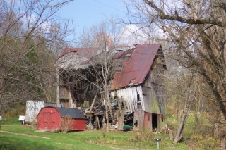 Barn in advanced stage of relaxation