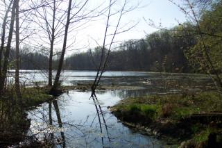 Lake Weimer inflow