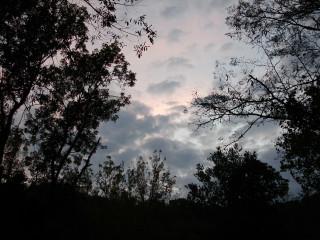 Evening sky over Wilderstead