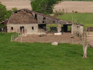 This barn has character