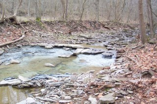 An inexhaustible supply of creek rock