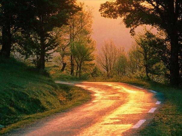 поворот дороги
