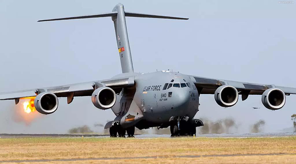 C-17_bird