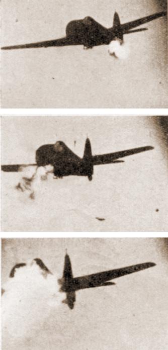Taif8