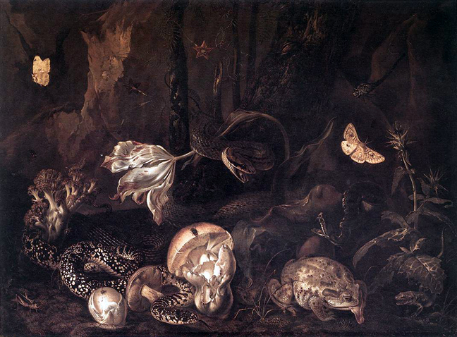 MARSEUS VAN SCHRIECK, Otto - Still-Life with Insects and Amphibians, 1662