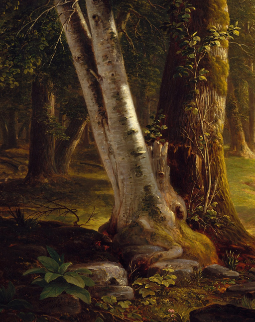 Asher_Durand_-_The_Beeches 2