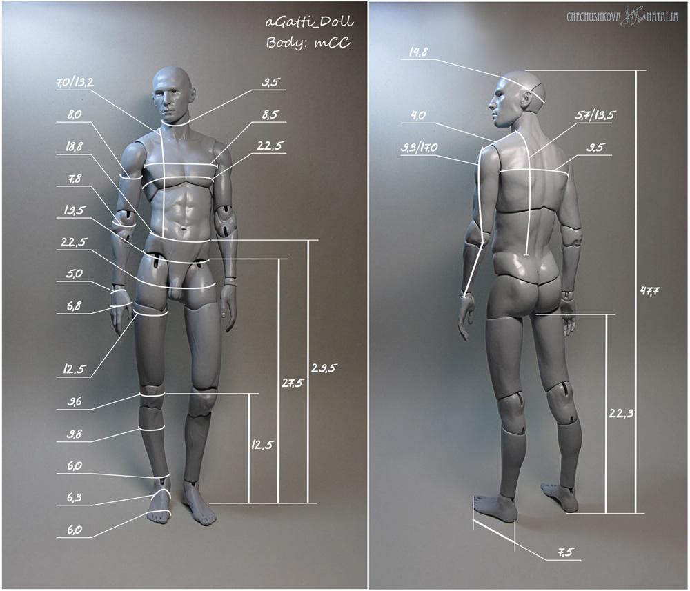 mCC. Размеры