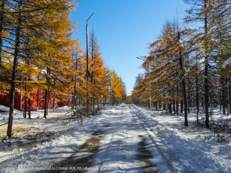 зима осенью (2 фото)
