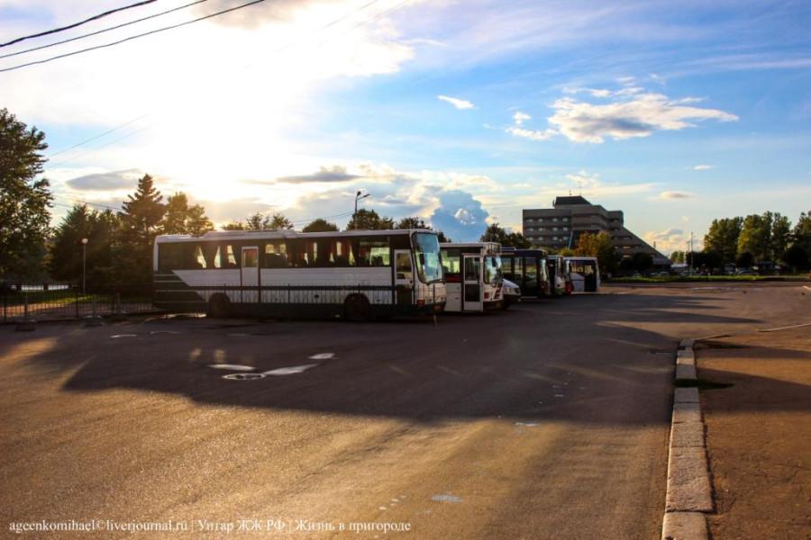 24. Автобусы