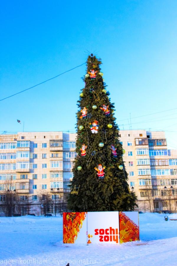 елка на площади Космонавтов