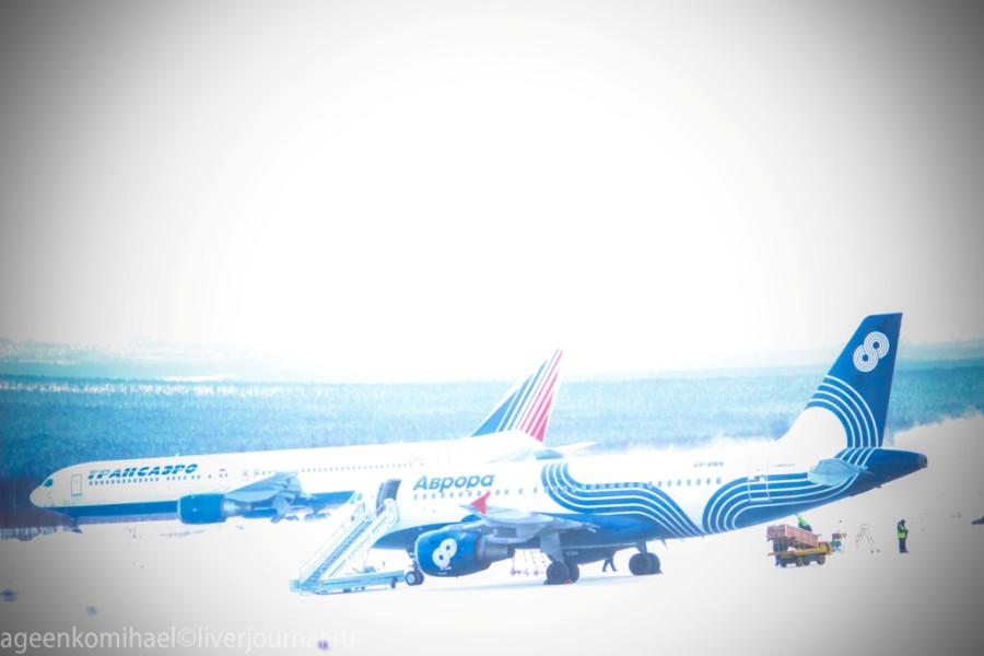 самолет авиакомпании Трансаэро движется по взлетной полосе