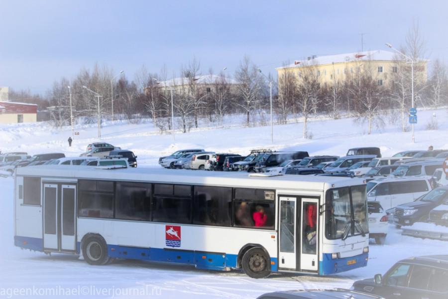 автобус №101 выезжает со стоянки в аэропорту Сокол